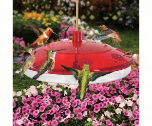 New Large Hummingbird Feeder