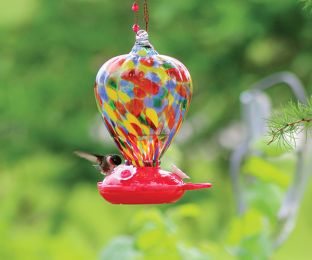 Art Glass Hummingbird Feeder Colour Balloon