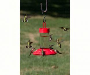 Dr. JB's 16 oz Clean Feeder All Red