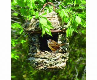 Acorn Hanging Roosting House