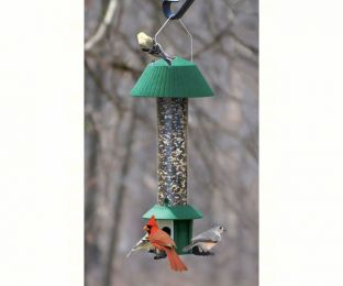Squirrel Defeater Seed Feeder