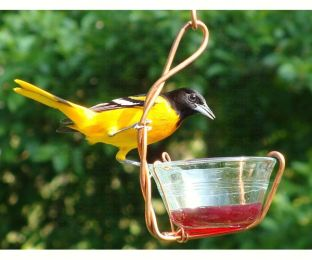 Single Jelly Cup Feeder