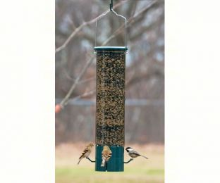 The Magnet Squirrel Proof Feeder