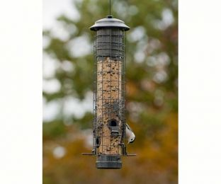 Dragonfly Squirrel Proof Feeder