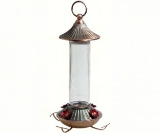 14 oz. Embossed Glass Hummingbird Feeder